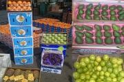 میوههای ممنوعه خارجی با هماهنگی کامل وارد میشود