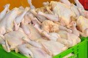 ذخیرهسازی ۶۰ هزار تن گوشت مرغ برای رمضان