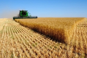 یارانه بخش کشاورزی