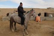 پرورش اسب در دل روستایی کوچک