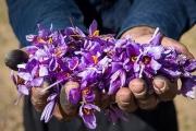 """روایتی خواندنی از مادران کارآفرینی که از خاک """"طلا"""" میسازند"""