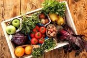 برگزاری نوآوردگاه مکمل های غذایی و گیاهی برای اولین بار در صنعت غذایی کشور