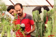 علاقه به گیاهان کاکتوس بهانه ای برای کارآفرینی