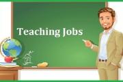 معرفی شغل معلمی