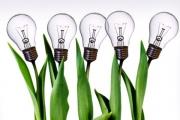 تعامل و همکاری ایدهپردازان فنبازار و استارتاپهای سبز