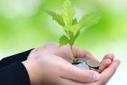 حل مشکلات مالی شرکت های دانش بنیان توسط صندوق های پژوهش و فناوری