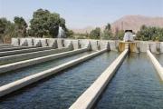تحقق اقتصاد مقاومتی در تولید آبزیان