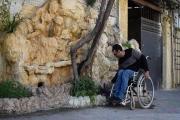 معلول کارآفرین: «قطع نخاع شدم، اما امیدم به زندگی قطع نشد!»