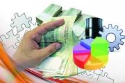 سرمایههای سرگردان برای کارآفرینی در خراسان جنوبی جذب شود